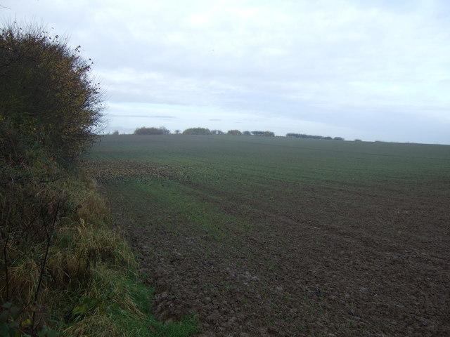 Farmland, Petty's Nook