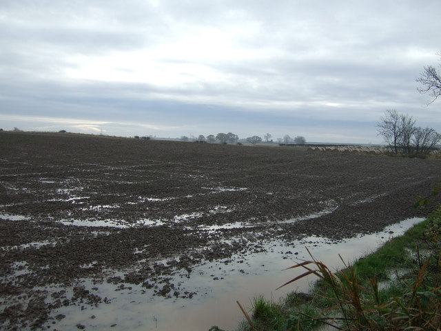 Farmland off Hill House Lane