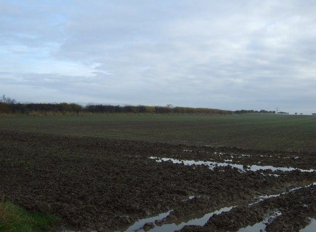 Farmland near Longpasture House Farm