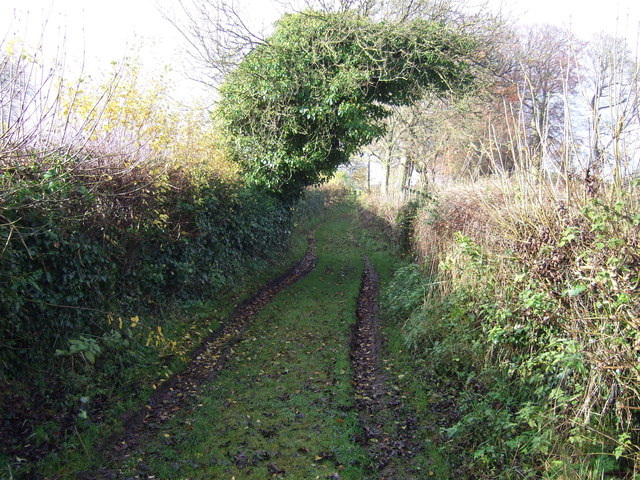 Track towards All Saints Church