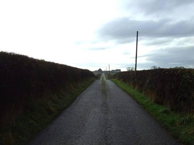 Track to Hauxley Farm