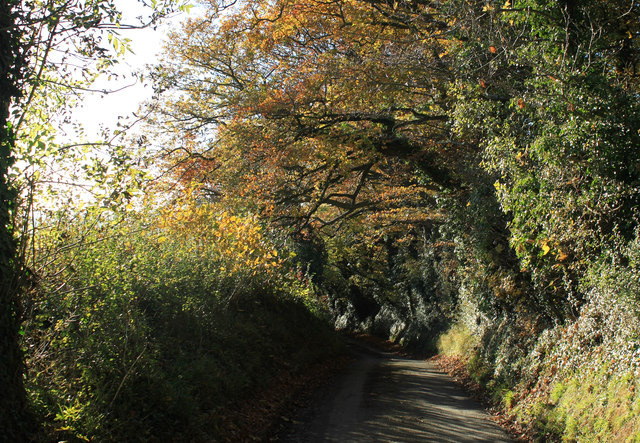2012 : Down Norton Lane to Chew Magna