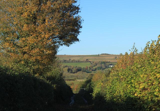 2012 : Farm track leading to fields off Norton Lane