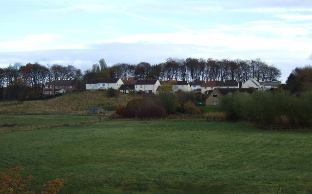 Farmland, Sedgefield