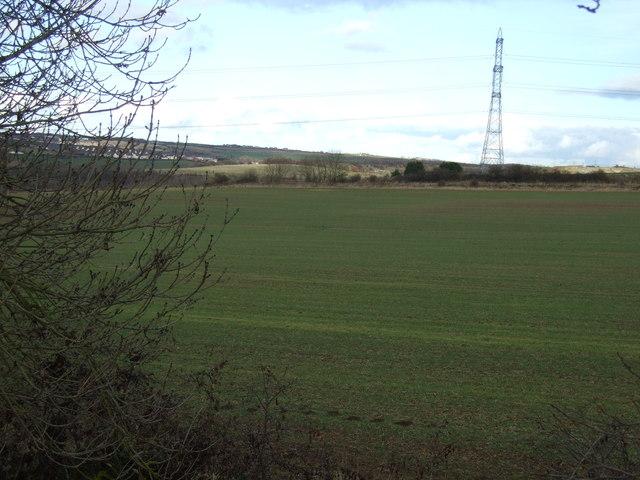 Farmland off the A177