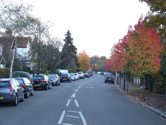 Autumn on Burbage Road, Dulwich