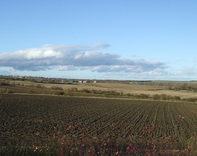 Farmland off the A688
