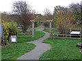 TQ5478 : Wildlife Garden by Roger Jones