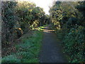 TQ0983 : Footway, Charville Lane by Alan Hunt