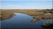 TQ9293 : View from Loftmans Sluice by Roger Jones