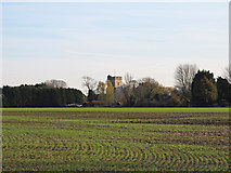 TQ9293 : Looking over the fields towards Paglesham Church by Roger Jones
