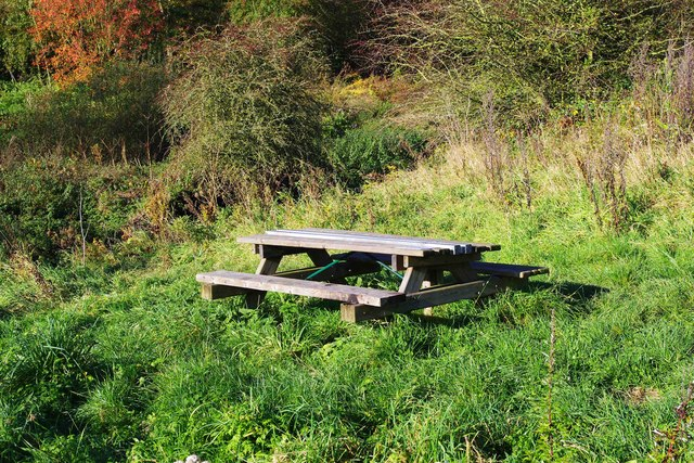 Picnic table in Droitwich Community Woods Nature Reserve, Droitwich