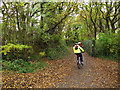 TQ5805 : Cyclists on route 21 by Stephen Craven