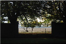TQ1669 : Gap in the boundary wall of Hampton Court Gardens by N Chadwick