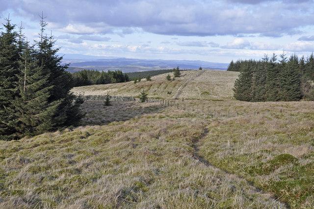 North-east from near Innerdouny Hill summit