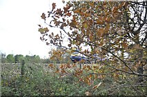 ST0207 : Cullompton : Railway Line by Lewis Clarke