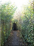 NY2822 : Footpath through the campsite by Graham Robson