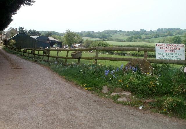 Entrance drive to New House Farm near Dingestow