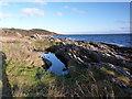 NR8756 : Rockpool near Claonaig by sylvia duckworth