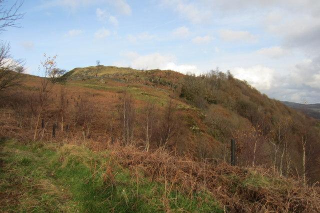 Haw Hill and Croglinhurst Wood seen from the Public Footpath