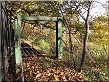 TQ4375 : A miniature suspension bridge by Stephen Craven