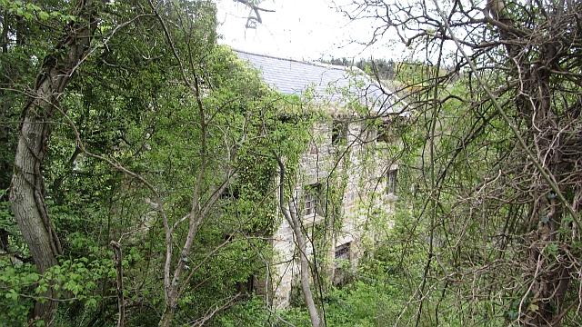 Mill, Guyzance