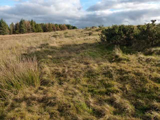 Possible site of a structure