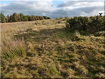 NS4660 : Possible site of a structure by Lairich Rig