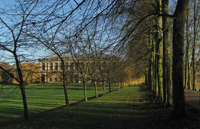 Trinity College: The Avenue and The Wren Library