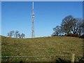 NZ0365 : Newton transmitter mast by Oliver Dixon