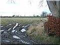 NZ0470 : Field near Matfen Tilery by Oliver Dixon