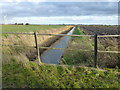 TL3791 : Bridge railings over a fen dike by Richard Humphrey