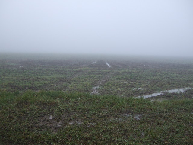 Muddy farmland off Eryholme Lane