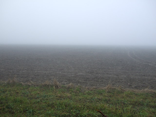 Farmland off Eryholme Lane