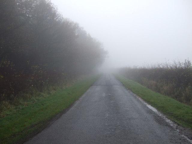 Eryholme Lane heading south