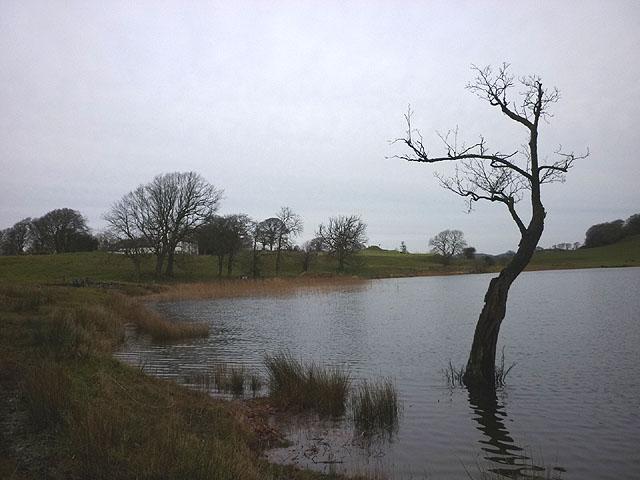 High water levels at Bigland Tarn