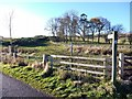 NU0121 : Footpath to The Dod from road north of Ilderton Moor by Andrew Curtis
