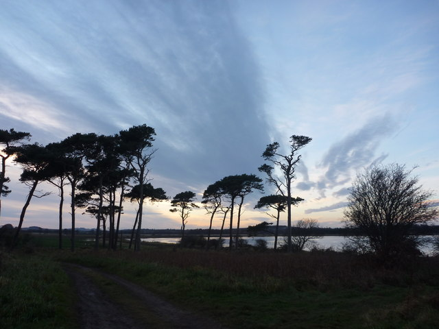 Coastal East Lothian : On Track At Hedderwick