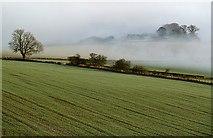 NT6235 : Arable farmland near New Smailholm by Walter Baxter