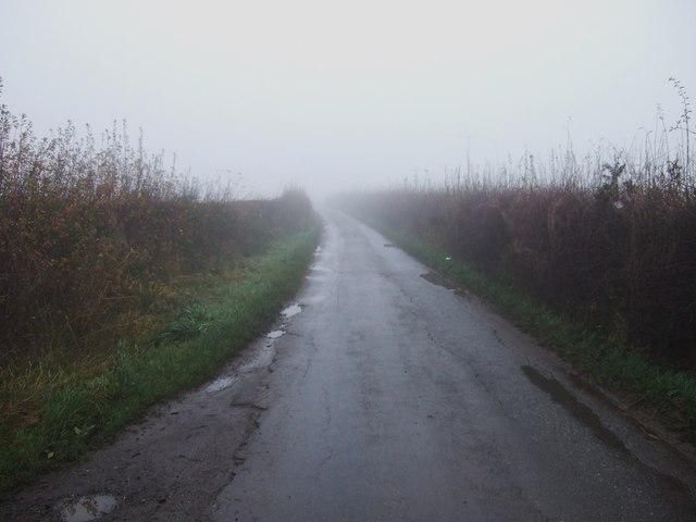 Lane heading north towards Dinsdale