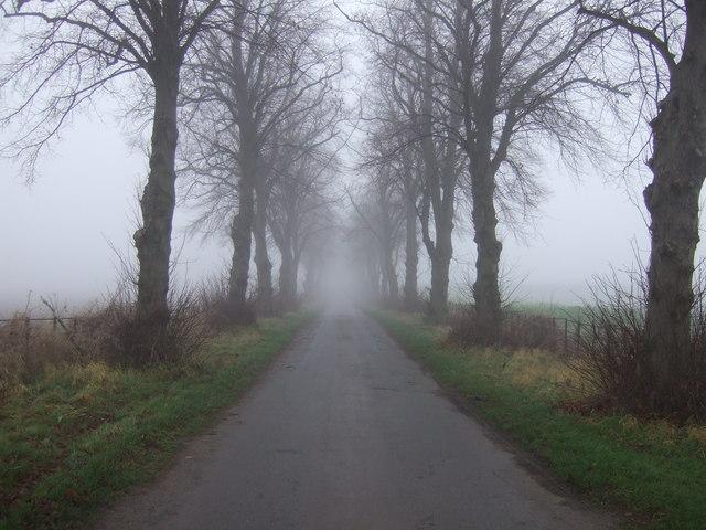 Roman Road towards Dinsdale