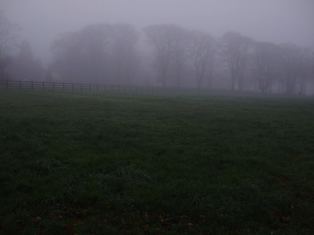 Grazing, Over Dinsdale