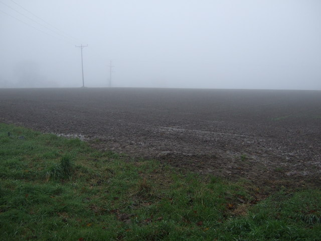 Farmland, Low Dinsdale