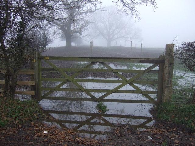 Field entrance, Neasham Hill Farm