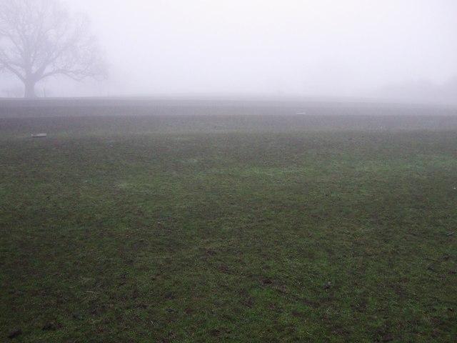 Farmland, Neasham Hill Farm