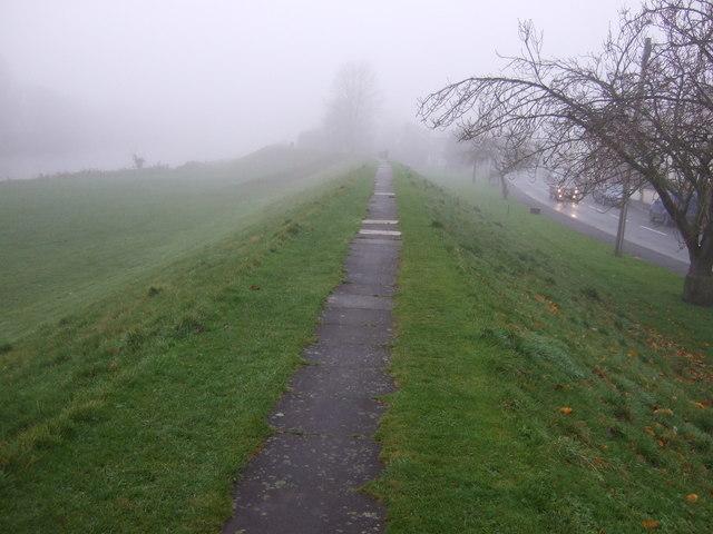 Path along the Tees flood bank, Neasham