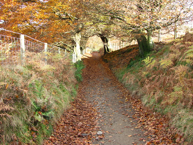 Sirhowy valley country park