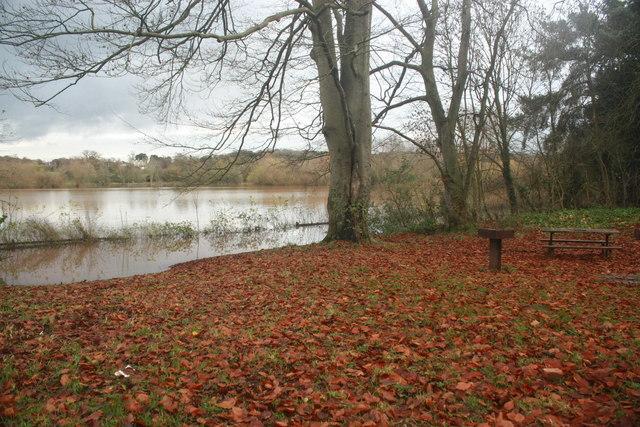 Caldicot Castle Country Park picnic area