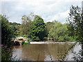 ST7813 : River Stour at Sturminster Mill by Des Blenkinsopp