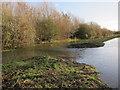 TL3369 : Flooding at Fen Drayton Lakes by Hugh Venables